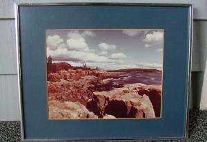 Tacky Landscape 08