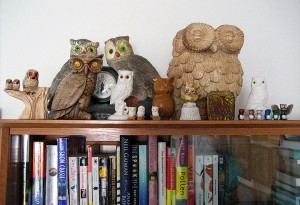 Mr. Owl and his friends