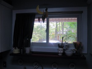 Gray Curtain in Kitchen Opened