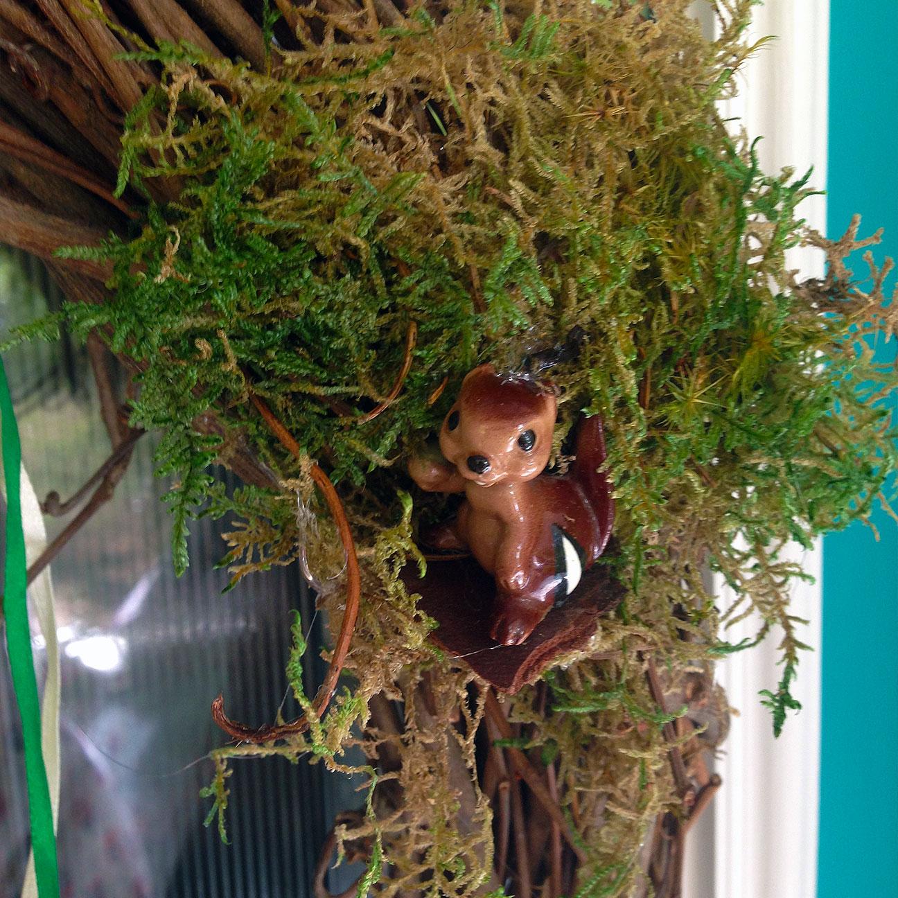 Squirrel (or Chipmunk)